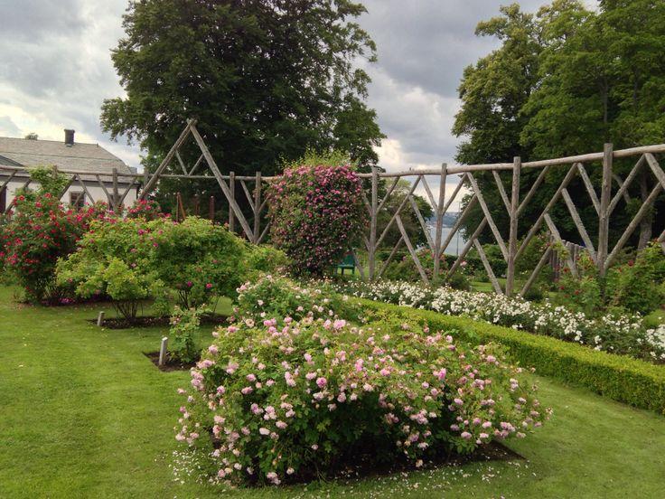 rose garden jönköping