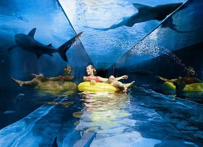 cool pool at an underwater hotel! must be really freaky to be swimming underwater and happen to look up and see the sharks above you!Buckets Lists, Sharks Tanks, Dubai, Underwater Hotels, Places, Water Sliding, Water Parks, Atlantis, Lazy River