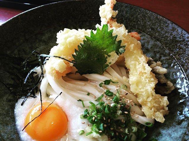 #香川 #Kagawa #高松 #Takamatsu #うどん #udon #noodles #えび #shrimp #美味しい #delicious #サカマ図鑑 #サカマショップ #l4l #followme #f4fsakamaincサカマ図鑑,サカマショップ,香川,delicious,noodles,うどん,kagawa,えび,shrimp,udon,高松,f4f,美味しい,takamatsu,followme,l4l
