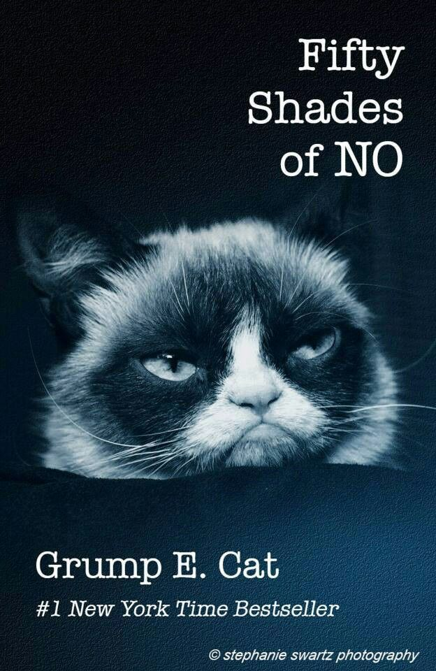 grumpy cat wedding invitations%0A Grumpy cat   GrumpyCat  Photo