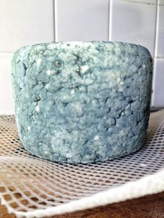 HOMEMADE BLUE CHEESE == Ingredients: 2 gallons whole milk (cow, goat or sheep), 1 pint cream, 1 t calcium chloride with 1T water, 1 pkg yogurt culture starter, 1 pkg direct-set mesophilic starter 1 t liquid rennet mixed with 1/4 c water, 1 oz blue cheese blended with 1/4 c water, 2T kosher salt ====