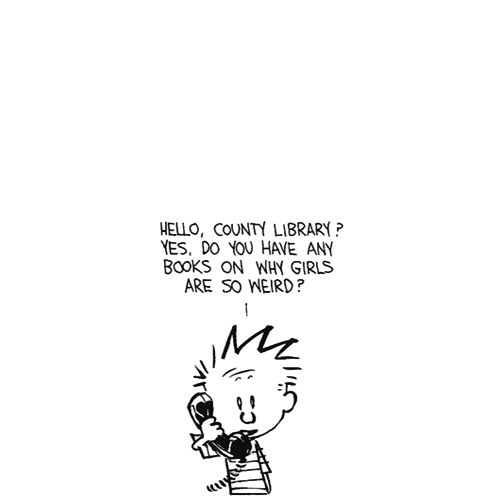 Calvin and Hobbes. Hell, I have a B.S. in Psychology, and I still can't figure it out!
