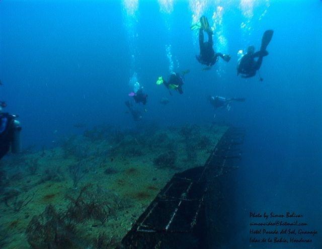 Jado Trader Wreck, Posada del Sol, Honduras