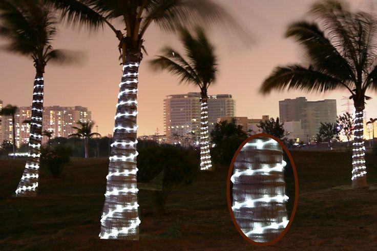Best Outdoor Solar Powered Rope Lights - Top 3 Reviews http://solartechnologyhub.com/best-outdoor-solar-powered-rope-lights-top-3-reviews/