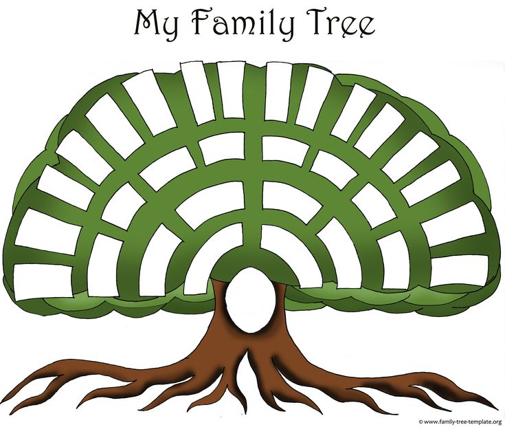 Best Family Tree Template Images On   Family Tree