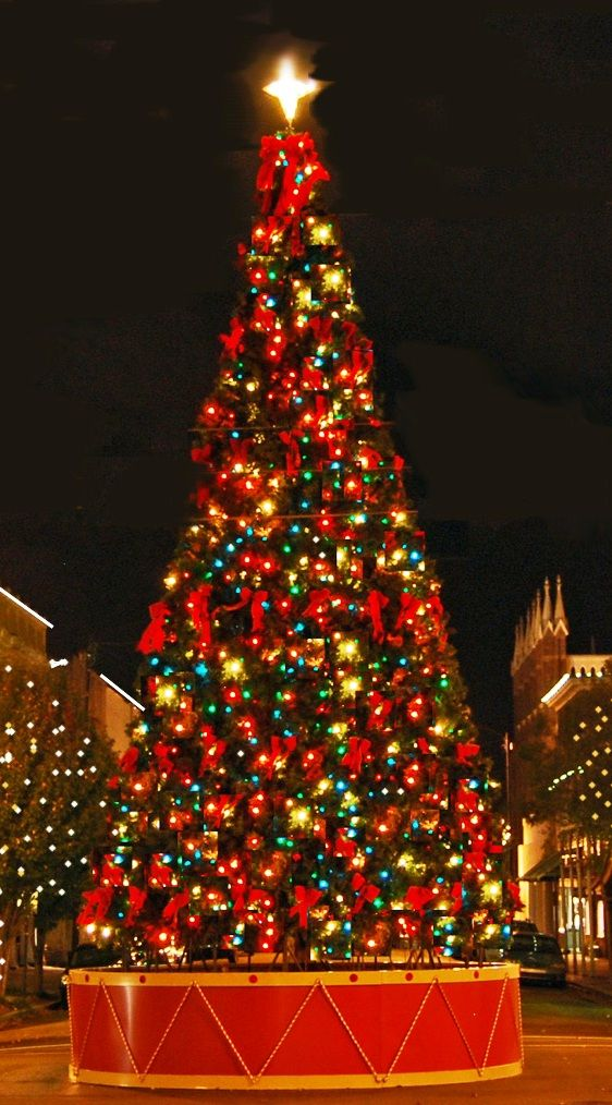 millennium park christmas tree 2015 trends