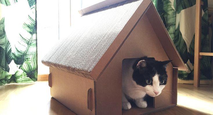 Giocattoli di cartone per gatti. I tuoi gattini si divertiranno tantissimo con queste idee di cartone! Scopri la nostra casetta di cartone. Entra adesso!