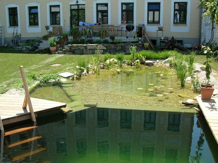Schwimmteich Fotos, Schwimmteich Bilder, Gartenteich Bilder, Teichfotos U0026  Teichbilder Von Honcak Zoo U0026 Garten In Langenlois Bei  Krems/Niederösterreich ...