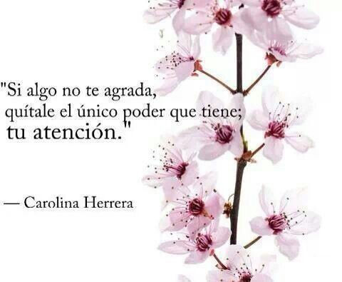 Enfocarse en lo que disgusta, no agrada, molesta, es justamente, como dice Carolina Herrera, darle el poder para que invada perspectivas, aparezca constantemente y tiña lo que se hace. Cualquier ob...:
