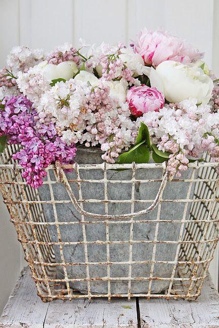 VIBEKE DESIGN ༺✿ ☾♡ ♥ ♫ La-la-la Bonne vie ♪ ♥❀ ♢♦ ♡ ❊ ** Have a Nice Day! ** ❊ ღ‿ ❀♥ ~ Thur 28th May 2015 ~ ❤♡༻ ☆༺❀ .•` ✿⊱ ♡༻ ღ☀ᴀ ρᴇᴀcᴇғυʟ ρᴀʀᴀᴅısᴇ¸.•` ✿⊱╮ ♡ ❊ **