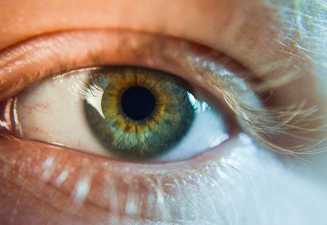 L'occhio umano ha una risoluzione di 576 megapixels, un Iphone soltanto 12