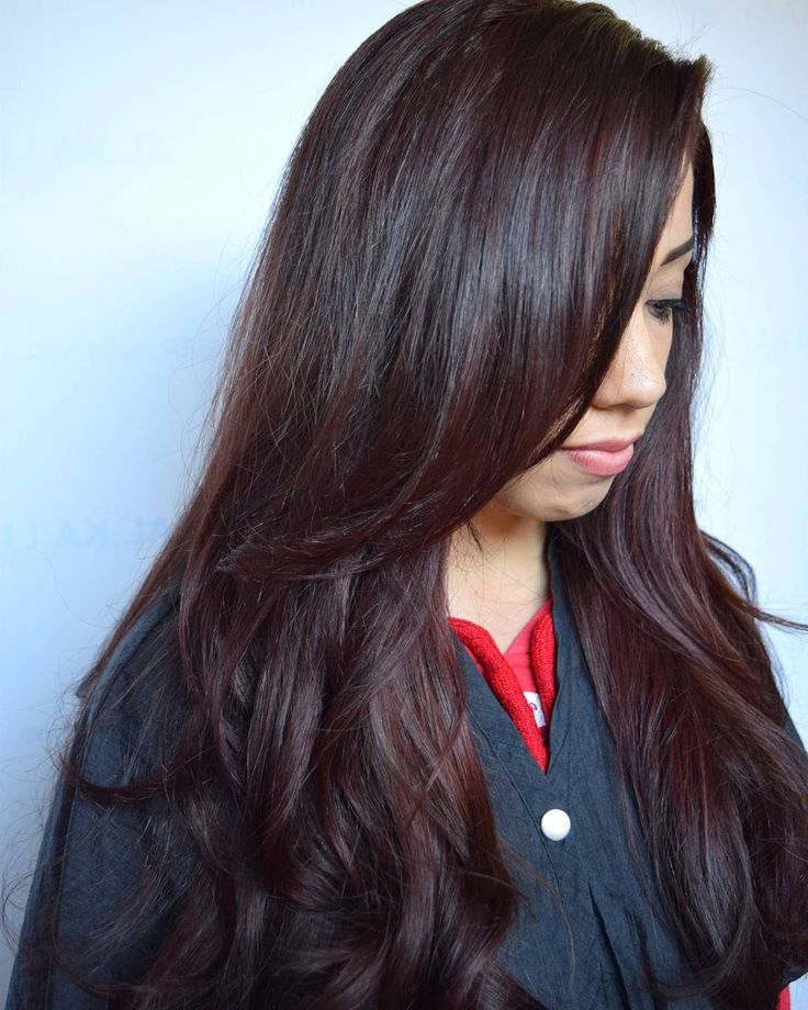 Best 25 Mahogany Hair Colors Ideas On Pinterest