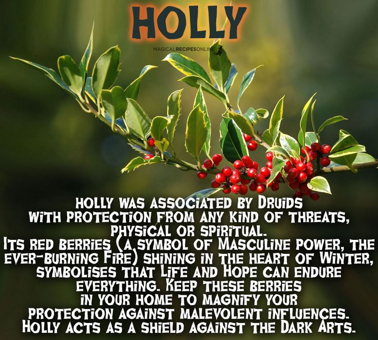 Holly uses