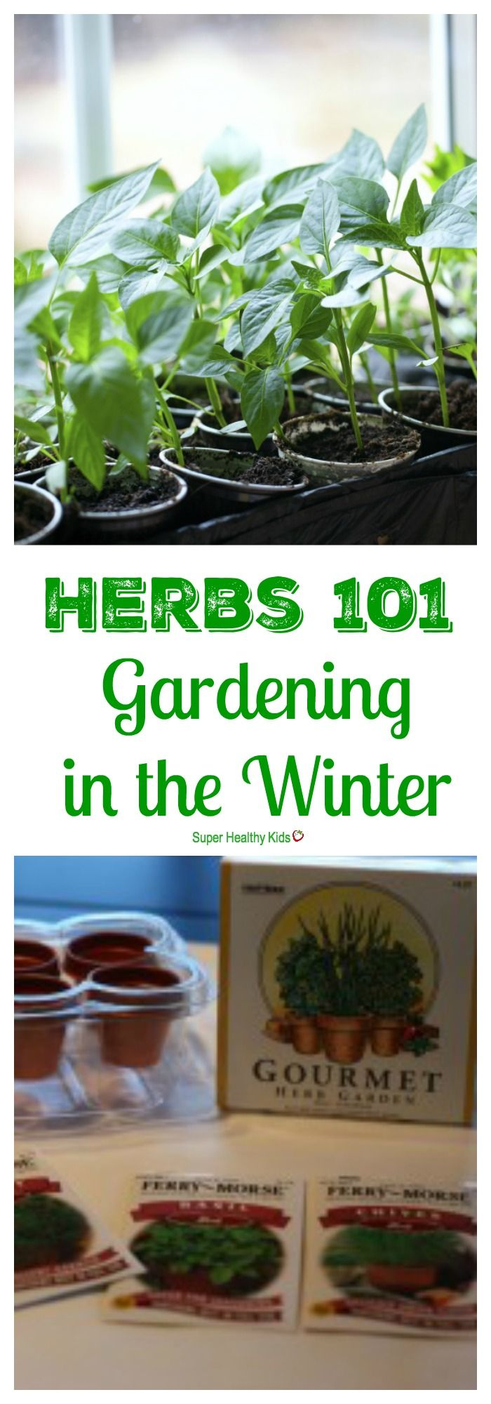 10496 best winter vegetables images on pinterest winter