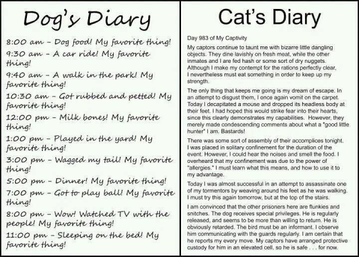 tee hee....in the mind of animals!