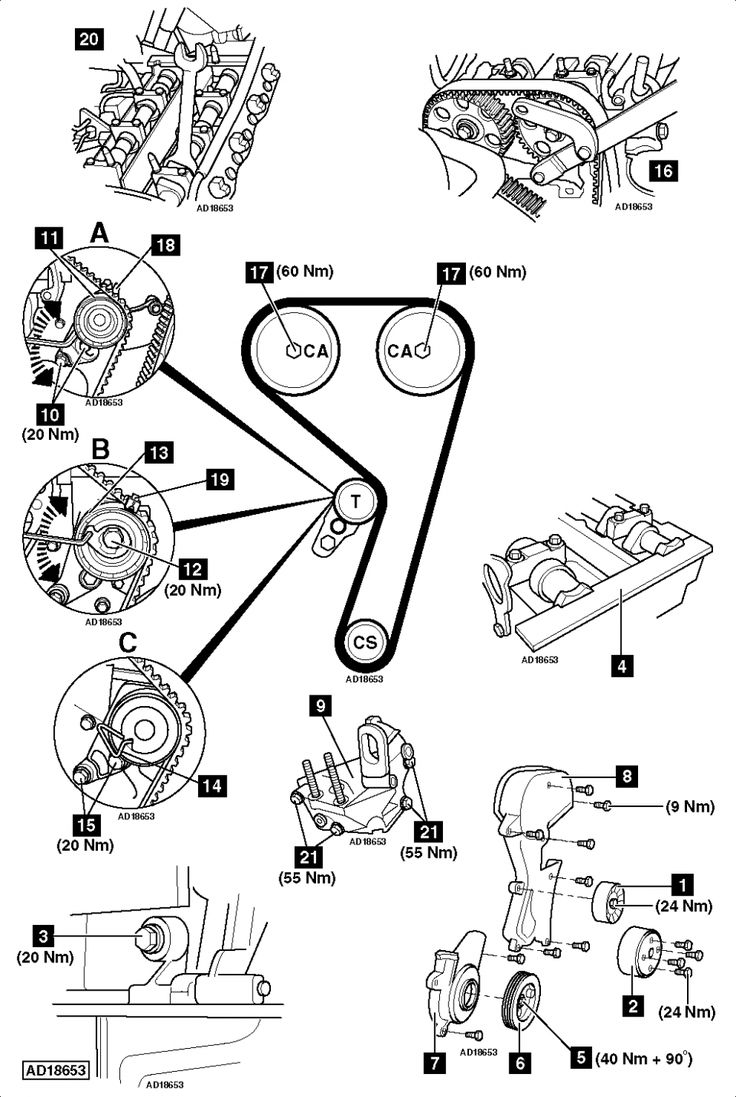 Ford Focus Engine Belt Diagram Ford Focus Engine Belt