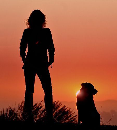 A walk at sunset with a trusted friend... Photography by TJ Scott