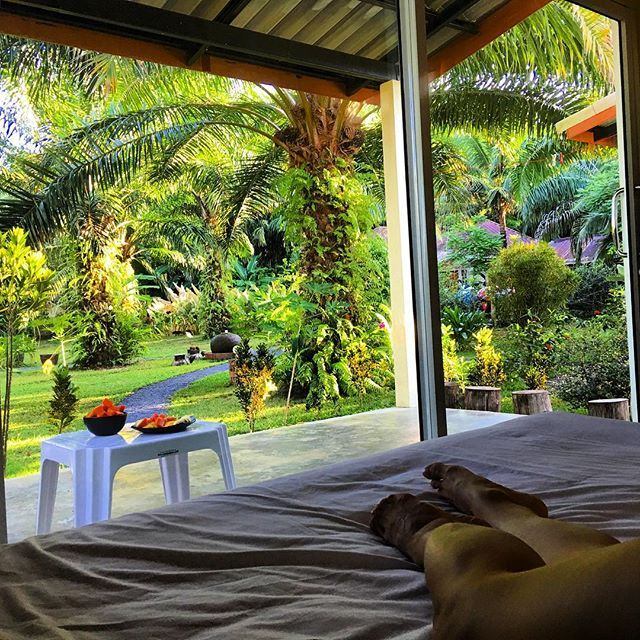 I woke up like this 😍 Jungle in front of me, fresh fruits for breakfast, exotic birds singing around. Thank you Thailand for being a paradise on Earth🌴🍉🍌 You can find more of my destinations on www.TRAVELANDKEEPFIT.com 💚 #love #thailand #stunning #view #wokeuplikethis #jungle #green #paradise #exotic #tropical #life #palmtrees #garden #fresh #fruits #healthyfood #perfect #lovemylife #travelandkeepfit #travel #beautiful #journey #nature #travellikeagirl #gypsy #girl #picoftheday #dream…
