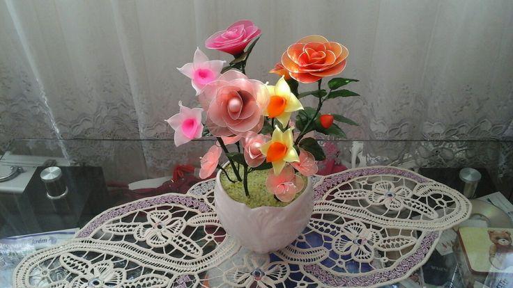 Harisnyavirág - nylon flower