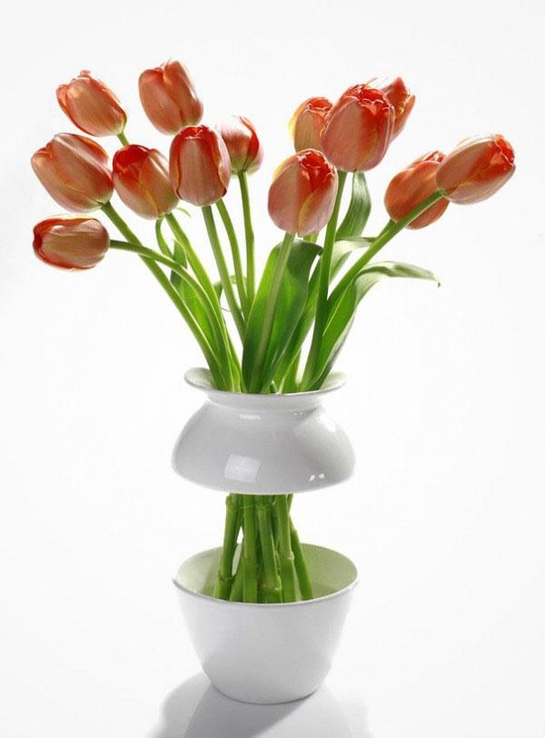Картинки прикольные вазы с цветами, открытки картинки поздравление
