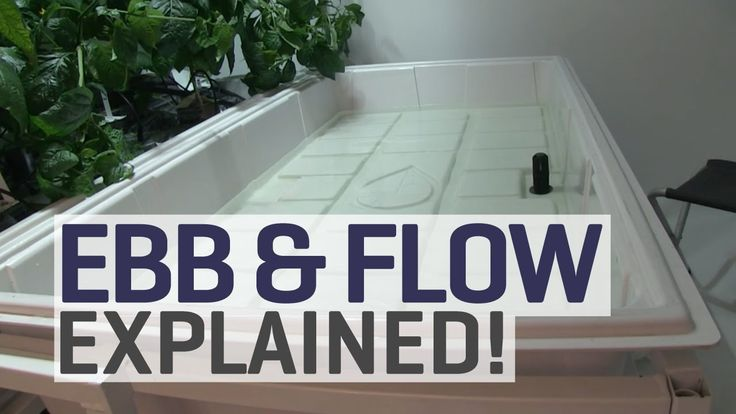 Just4Growers explains everything that you need to know about an ebb and flow hydroponic system! Great video!  https://www.youtube.com/watch?v=60uokf3WmTo