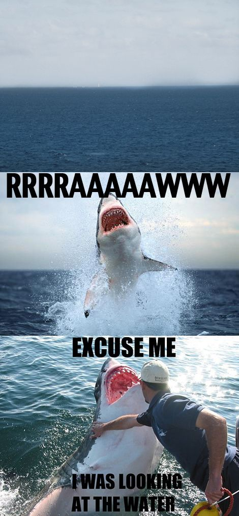 I laughed way too much at this....on another note, I would have died a thousand deaths.