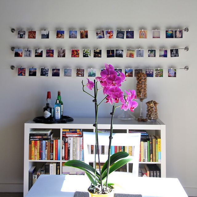 22 Photo/Instagram Walls as a Part of Interior. Messagenote.com Instagram Gallery Wall by TheWaspyRedhead  via Flickr