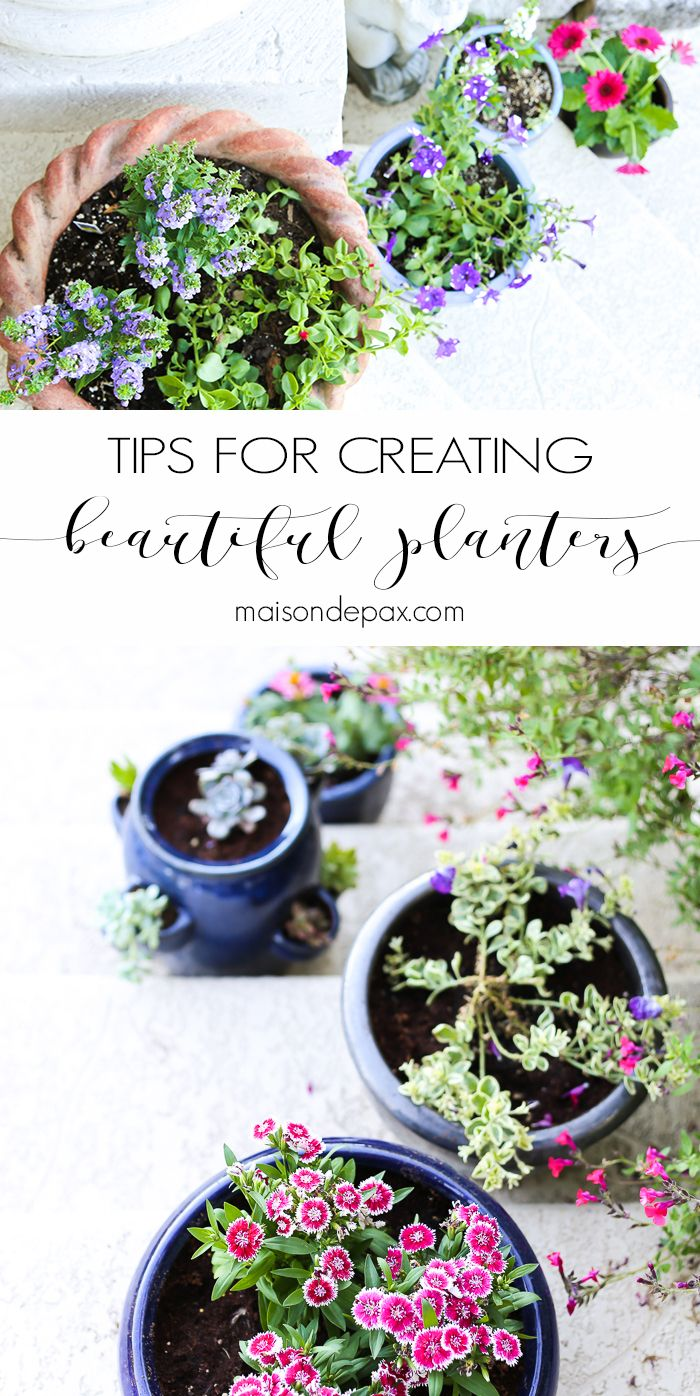 Tips for Creating Pretty Potted Plants: One of the easiest ways to spruce up any outdoor space is with beautiful potted plants. Don't miss these tips for planning, designing, planting, and caring for beautiful, healthy plants!
