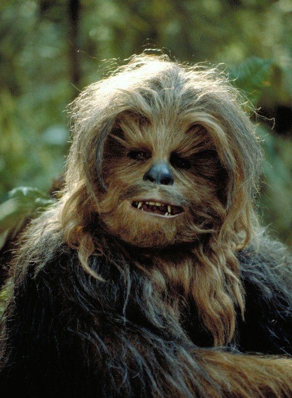 """¿Sabías qué? Para crear la """"voz"""" de Chewbacca, el mezclador de sonido Ben Burtt utilizó una morsa llamada Petulia y un oso pardo llamado Pooh."""