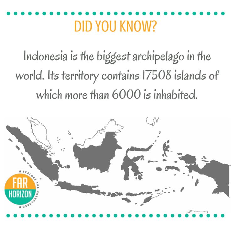 Begin Your Adventure Today! #Indonesia #curiosity #facts