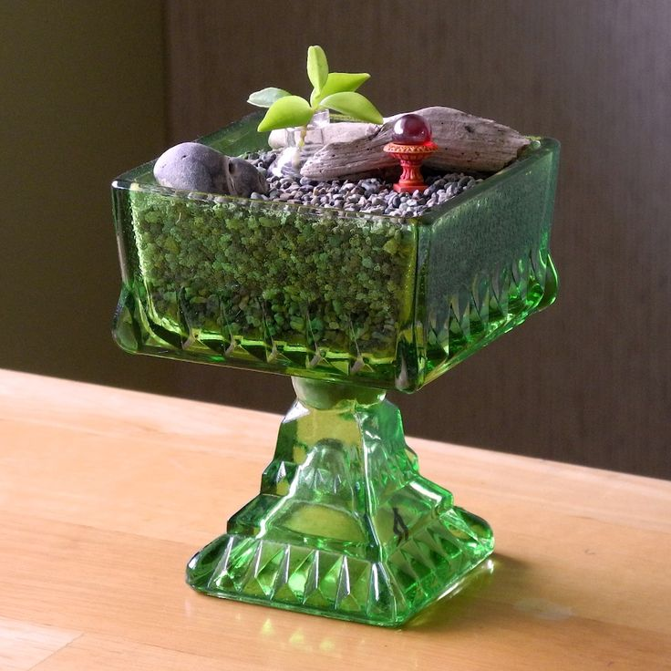 miniature garden ideas for black thumbs part ii