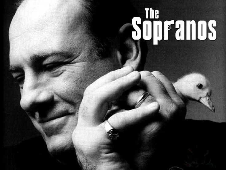 The Sopranos is my favourite TV show ever. There are other great shows (pins to come) but it is just so well put together, with great script, lots of action and complex characters.