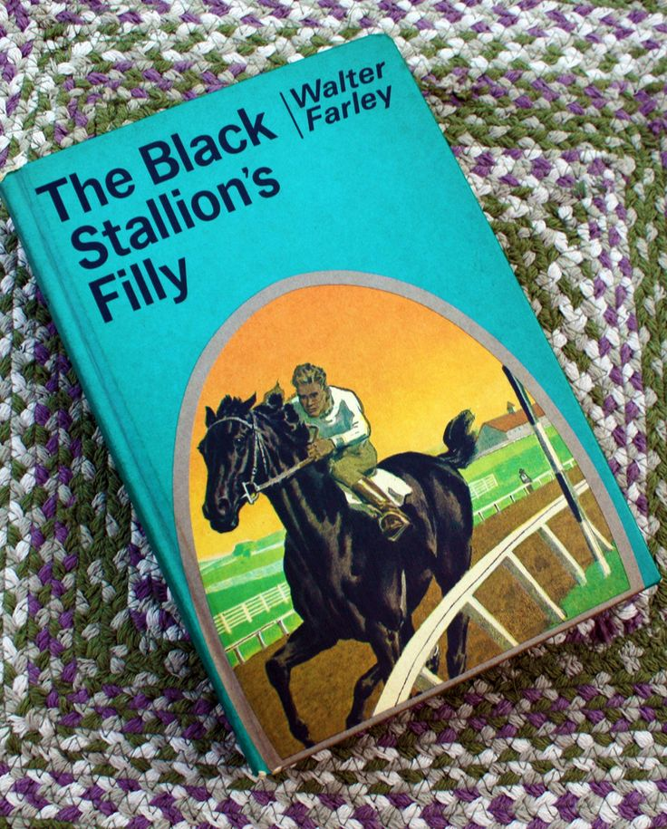 the black stallion book review
