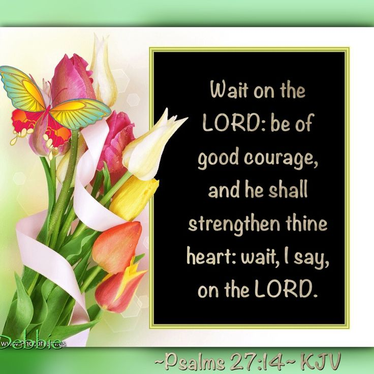 Wait on the LORD: be of good courage, and he shall strengthen thine heart: wait, I say, on the LORD. ~Psalms 27:14~ KJV