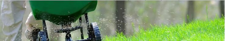 Looking for best Weed Control Company Brooklyn Center? Ricks Lawn & Snow Solutions, LLC provides great companies. Select and try it today.
