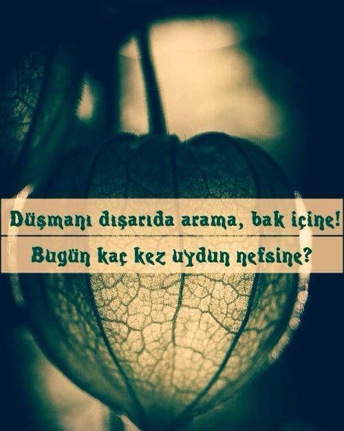 Turkish quotes