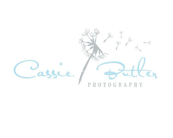 Modern Vintage custom photography Logo Design by RedMeadowDesignCo, $10.00