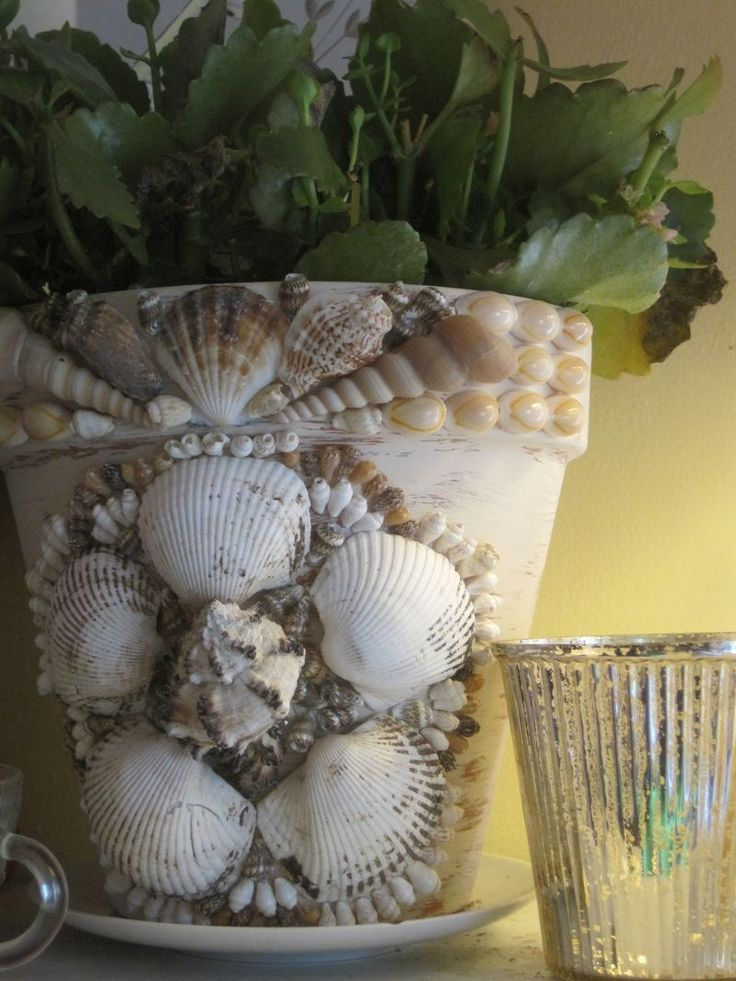 I think I am going to Hobby Lobby to get a bag of shells to make a pot like this
