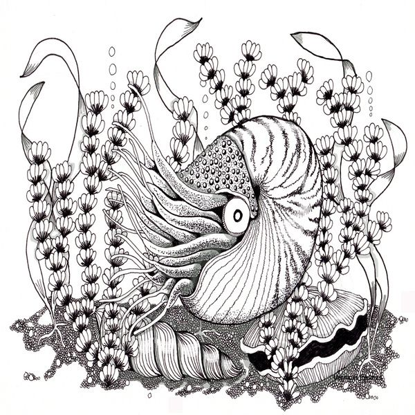 99 best MERMAID ZENTANGLES images