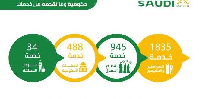 الاستعلام عن البوابة الوطنية لوزارة العمل عبر بوابة سعودى Pie Chart Chart
