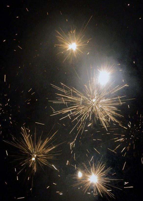 Backyard Fireworks : Backyard Fireworks  Fiery FIREWORKS  Pinterest