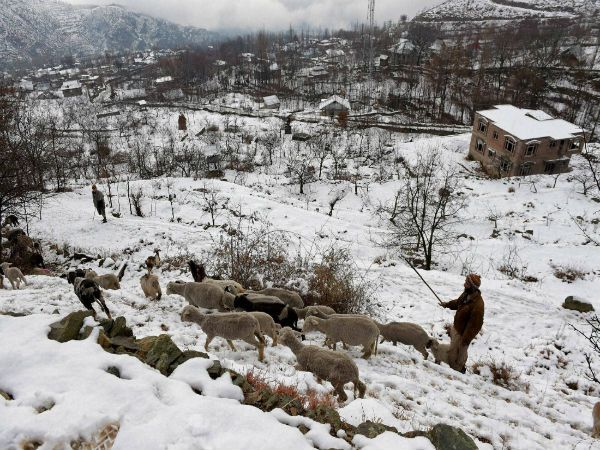 "The strategic Jammu-Srinagar highway was closed for traffic on Sunday due to fresh snowfall. ""Snowfall in Patnitop and Bannihal sectors has led to the halt of traffic today (Sunday),"" a traffic department official said."
