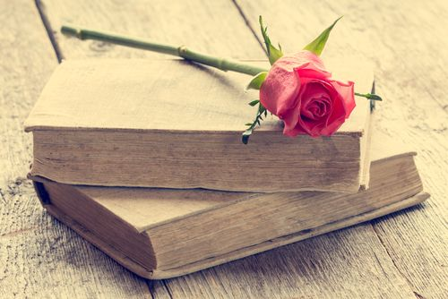 Looking for some clean romance novels to read this summer? Check out this list of some of our favorite books, including several new titles from LDS authors!