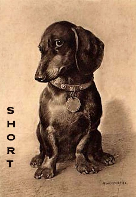 dachshund in vintage art - adorable Love the shorties!!