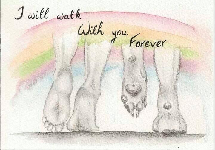 I will walk with you forever. Dog loss