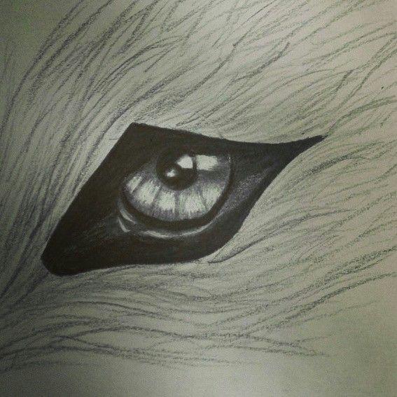 Wolf eye drawing...love art!