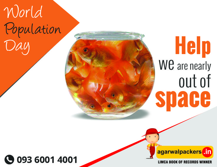 World Population Day Visit Us: http://goo.gl/m2R3So #11thJuly #WorldPopulationDay #July11 #WPD2016 #Youth #earth #population #healthcare #SafeRelocation #Household #Transportation #Relocation #Shifting #Packers #Movers #Agarwal #Residential #Offering #Householdpackers #Bangalore #Delhi #Mumbai #pune #hyderabad #Gurgaon #india