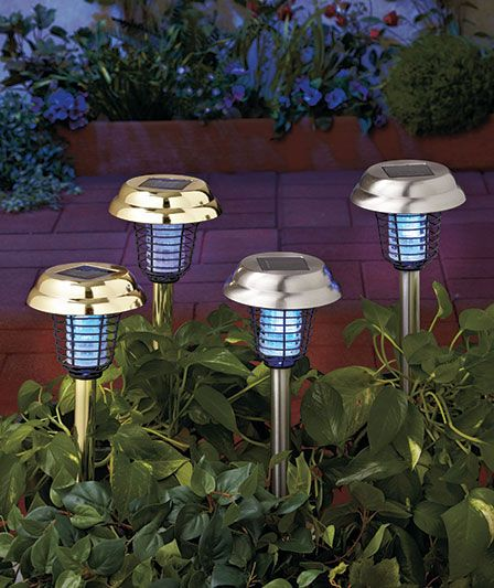 Solar Mosquito-Zapper stake lights, so freaking cool