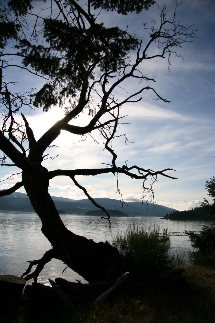 salt spring island muslim I spent several years on salt spring island as a small child, living with my hippie  parents in a ramshackle farmhouse on the south end of the.
