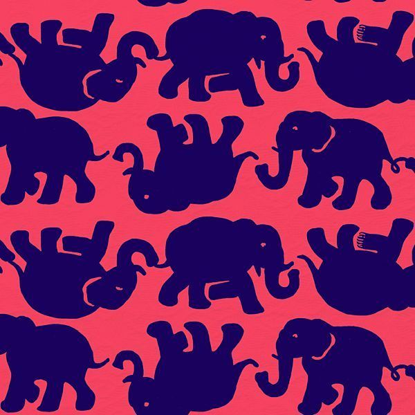 Lilly Pulitzer Print :  Tusk in Sun